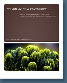 Art of RAW Conversion: How to Produce Art-Quality Photos with Adobe Photoshop CS2 and Leading RAW Converters