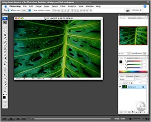 Adobe Offers Free Photoshop CS3 Video Tutorials At Their CS3 Video Workshop Site