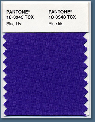 Pantone Color Of The Year 2008 - PANTONE 18-3943 Blue Iris