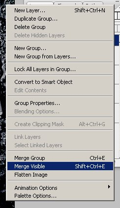 Forensic Photoshop Tutorial - Merge Visible Layers
