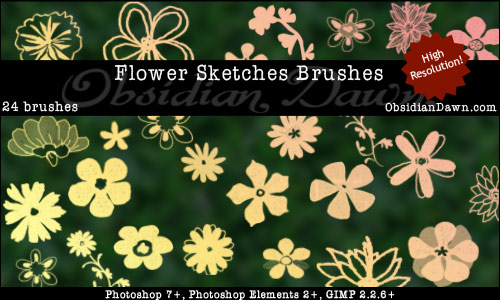 Flower Sketches Photoshop Brushes