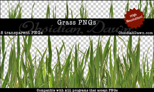 Grass Transparent PNGs From Obsidian Dawn
