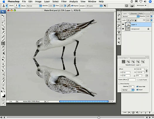 How To Mirror Your Clone Stamp - Photoshop Cloning Tip From John Nack - Plus Video Tutorial From Russell Brown