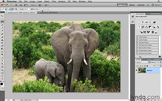 content aware tool photoshop cs5 video