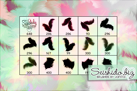 Free Photoshop Brushes From Janita - Fluffy Feathers