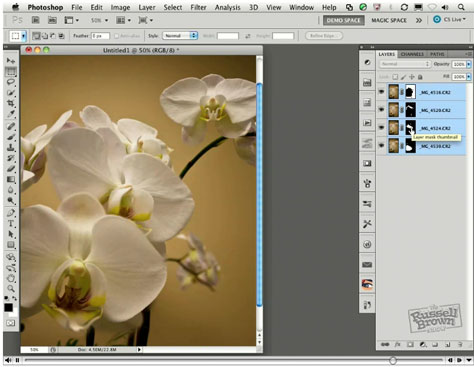 Photoshop's Auto-Blend Feature - Video Tutorial - Sharpen Focus Using Stacked Images