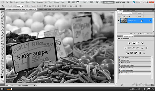 Photoshop Black-and-White Workshop- Create Incredible Images from Color Originals