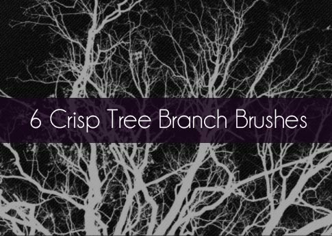 Free Set Of Photoshop Brushes - 6 Crisp Tree Branch Brushes