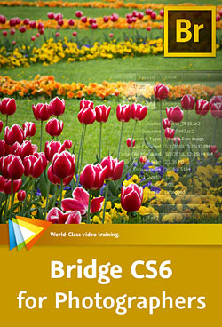 Bridge CS6 for Photographers - Browse, Manage, Sort, Organize, and Share Your Photos