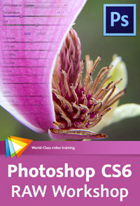 Photoshop CS6 RAW Workshop - Free Video Tutorials - Maximize Your Photo Quality with ACR 7