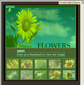 How To Buikd A Photo Gallery Website In Dreamweaver CS6