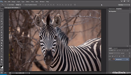 Photoshop Video Tutorial - Organizing Photoshop CS6 Panels