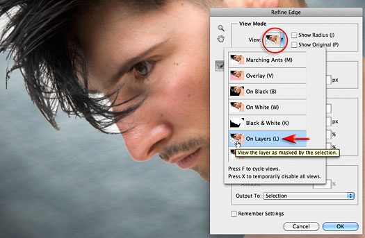Refine Edge - Best New Feature in Photoshop CS5